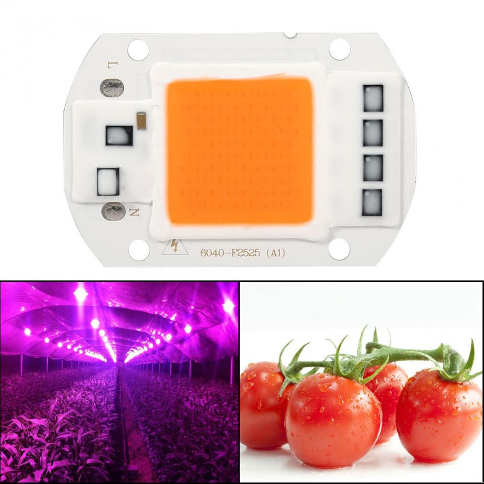 Led Grow Lamp Light 50W Full Spectrum WarmWhite Led COB Chip Grow Light Growth Lamp