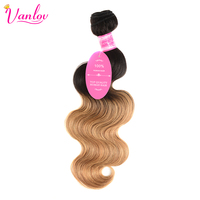Vanlov Ombre Human Hair Body Wave 2 Tone T1B 27 Wet And Wavy Brazilian Hair Weave