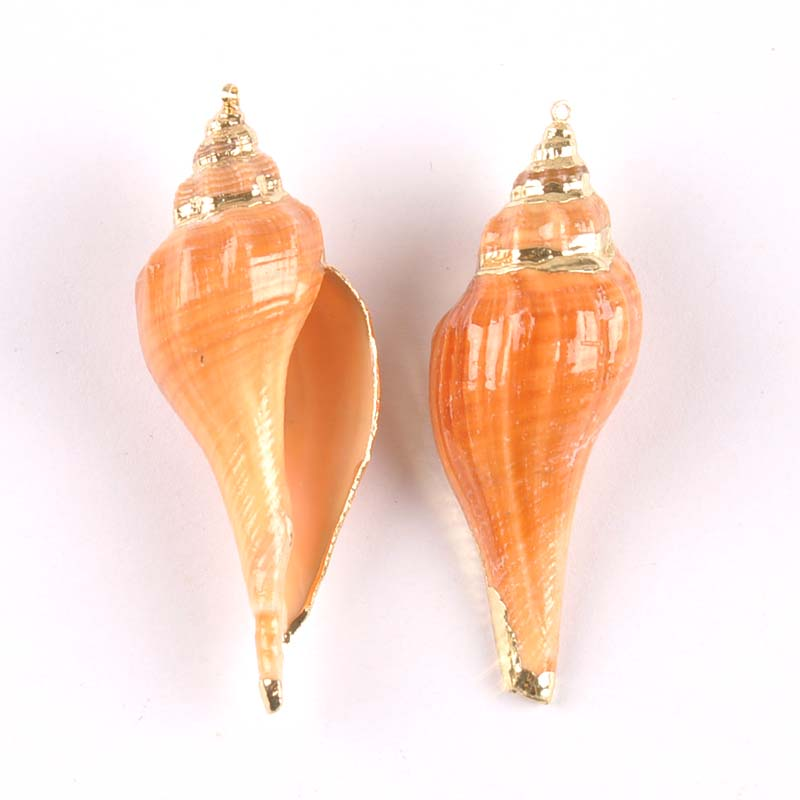 Natural Spiral Shell Gold Plated Conch For Earring Making DIY Handmade Charms Pendant SeaShells 5-7cm 2pcs TRS0331