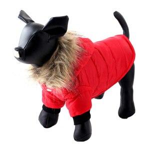 Image 2 - Pawstrip XS XL Caldo Piccolo Cane Vestiti di Inverno Del Cane del Rivestimento del Cappotto Cucciolo Rifornisce Per Chihuahua Yorkie Vestiti Animali Domestici Vestiti Del Cane di Inverno