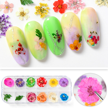 12 Colors Dried Flowers Nail Art Decorations Preserved Design Flower with box manicure Nails Accessoires Tips