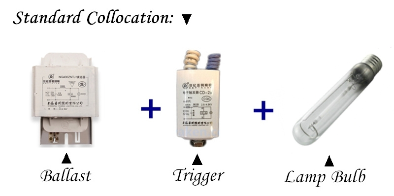 220 В специализированный электронный балласт для 150 Вт 250 Вт 400 Вт 1000 Вт натриевая лампа высокого давления осветительные аксессуары Специальный выпрямитель