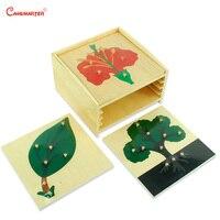 Holz Set Kabinett Mit Pflanzen Puzzles Knopf Montessori Spielzeug Pädagogisches Spielzeug Kinder Kinder Puzzles Lehrmittel Kinder BO001 3-in Puzzles aus Spielzeug und Hobbys bei