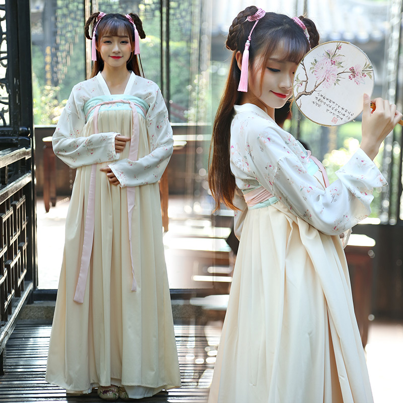 Chinese Tang Ming Dynasty Ruqun Improved Hanfu Women Lolita Long Sleeve Cotton Chiffon Dress Costume Ancient Daily life Hanfu