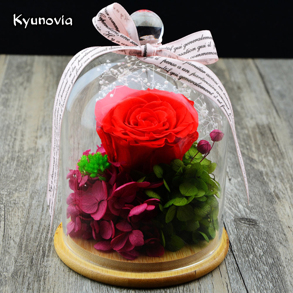 Aliexpress Buy Kyunovia Valentines Day Birthday Fresh Rose