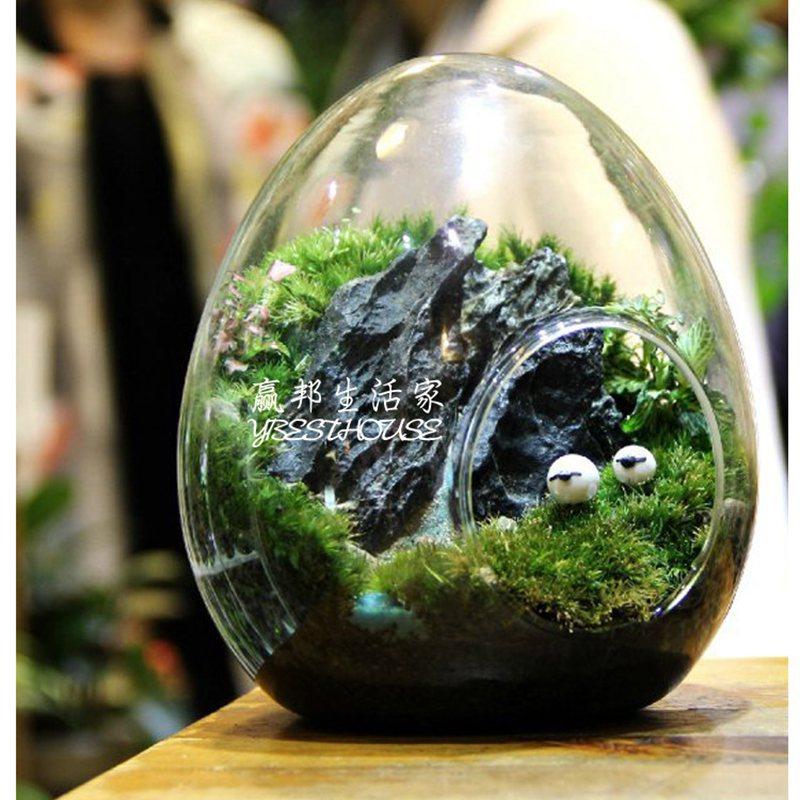 Online Kaufen Gro 223 Handel Glas Vase Zylinder Aus China Glas