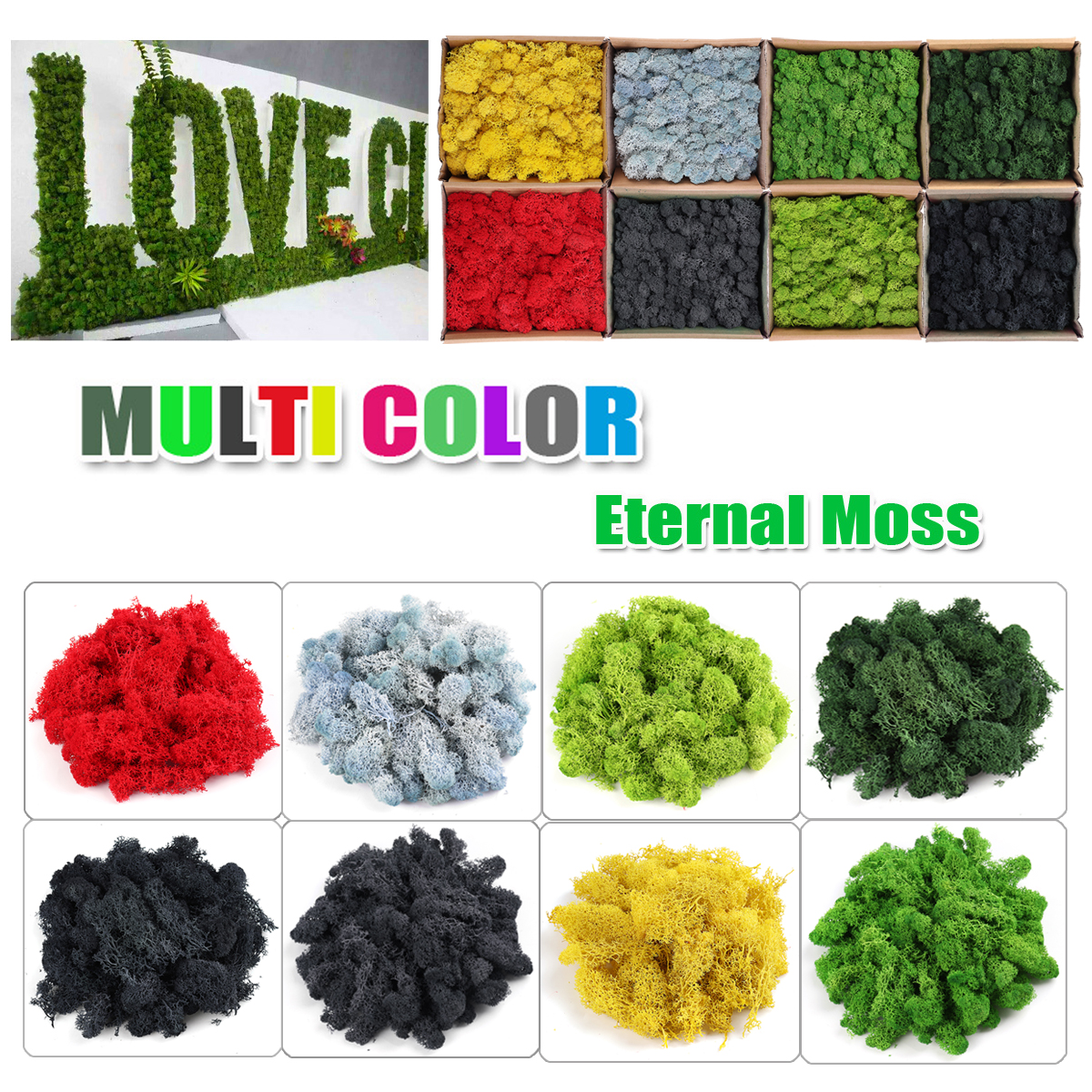 Natural Norwegian Reindeer Moss Preserved Dried Craft Flower Stamen Decoration for Furnishing with all Kinds of Color craft