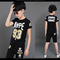 Boys Clothing Sets Cotton Sports Suits Short Sleeve Sportswear Summer Children Tracksuits Knitwear Kids Clothes T-Shirts Pants