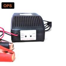 Carro 12 V 24 reparação Inteligente pulso carregador de bateria de Chumbo Ácido para & Smart lood-zuur desulfator Acculader voor 110 V-270 V de Entrada