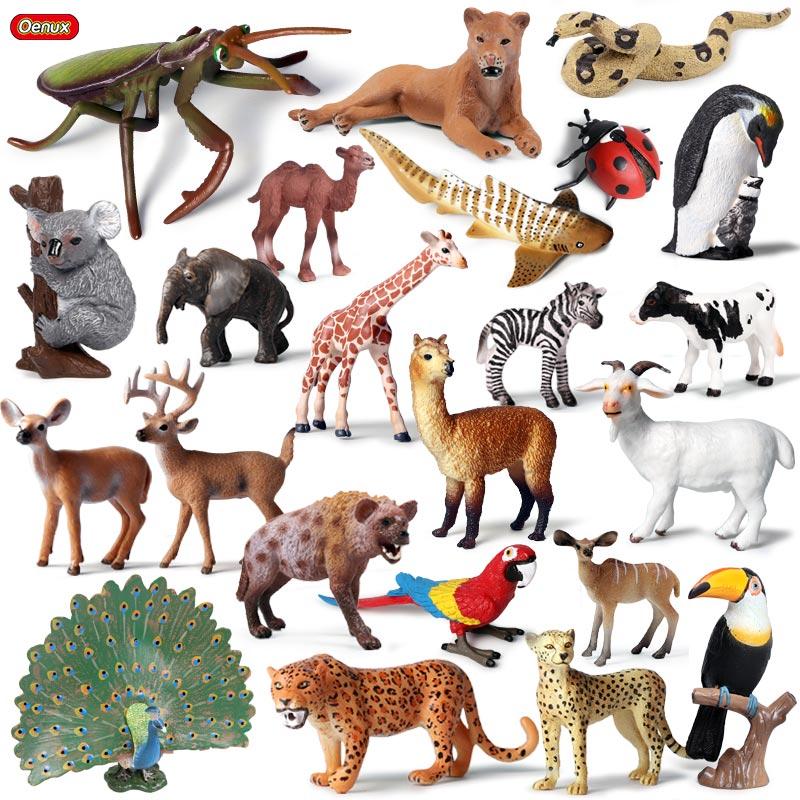 Oenux Original Wild Animals Leopard Lion Model Action Figure Alpaca Peacock Spider Figurines Miniature Collection Toys For Kids