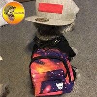 개인 두 색상 스타 스카이 인쇄 캐리어 간식 애완 동물 고양이 배낭 개 학교