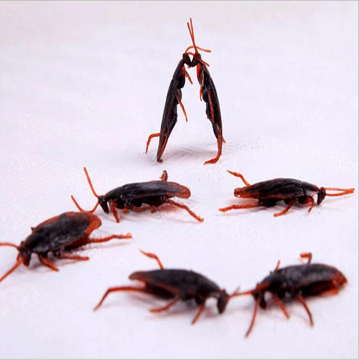 5pcs April Fool's Day the whole person Funny Toys Creative Toys Devil Toys simulation cockroach