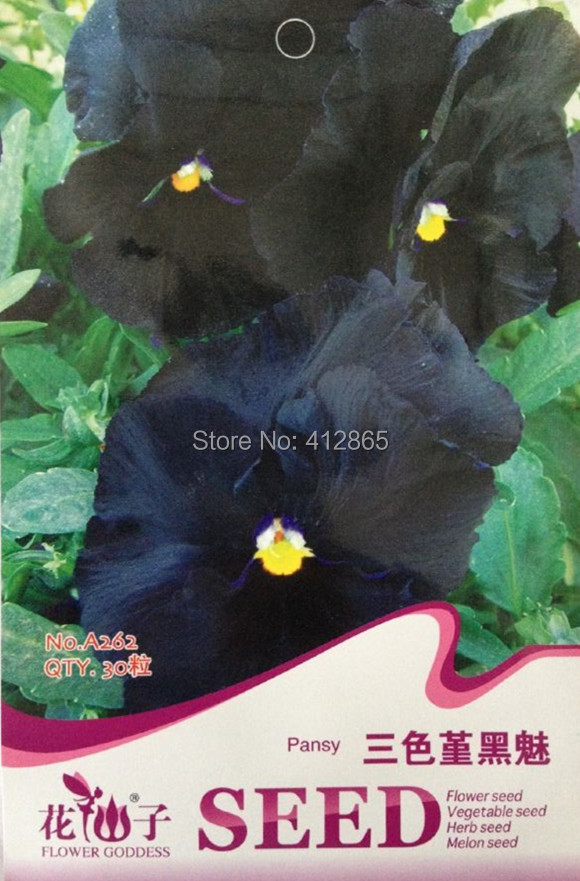 30pcs/pack Rare Flower Seeds Black Pansy Seeds, Cold Resitance Perennial Home Decoration Mini Bonsai Flowers Seed
