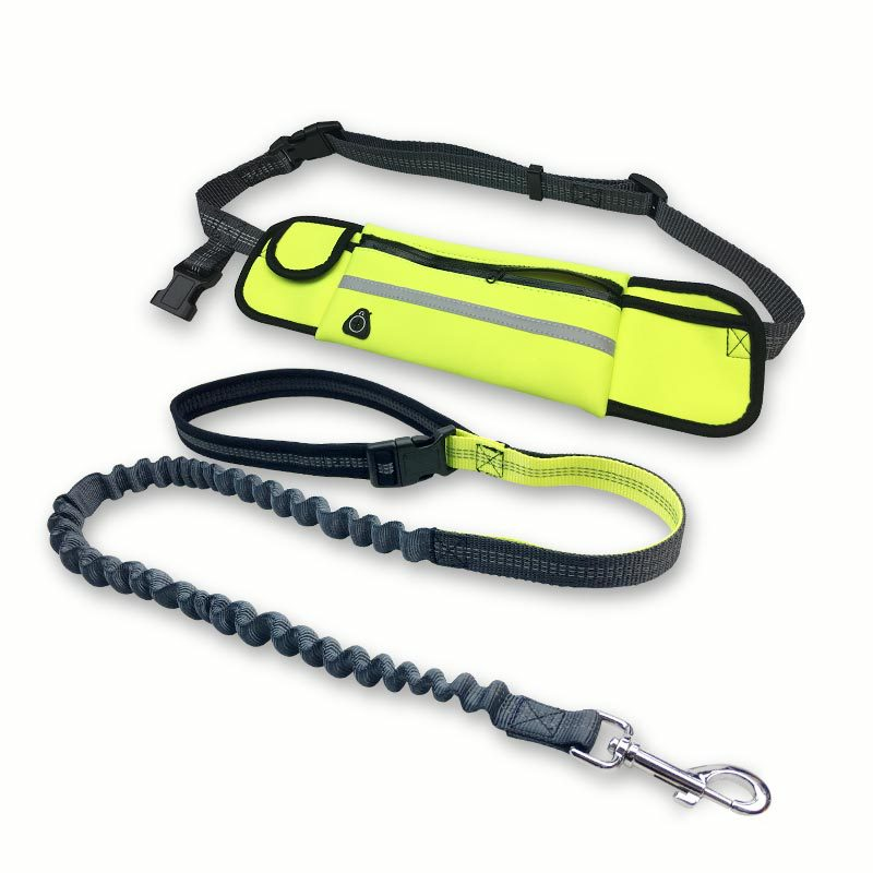 Free shipping,Retractable hand-free elastic dog leashes breakaway walking running reflective dog leash with waist bag