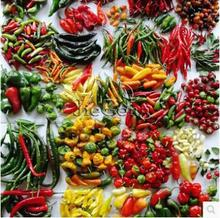 Mixed 120 seeds/pack Chilli Pepper Seeds Ornamental Vegetables Plants Paprika Seeds Potted