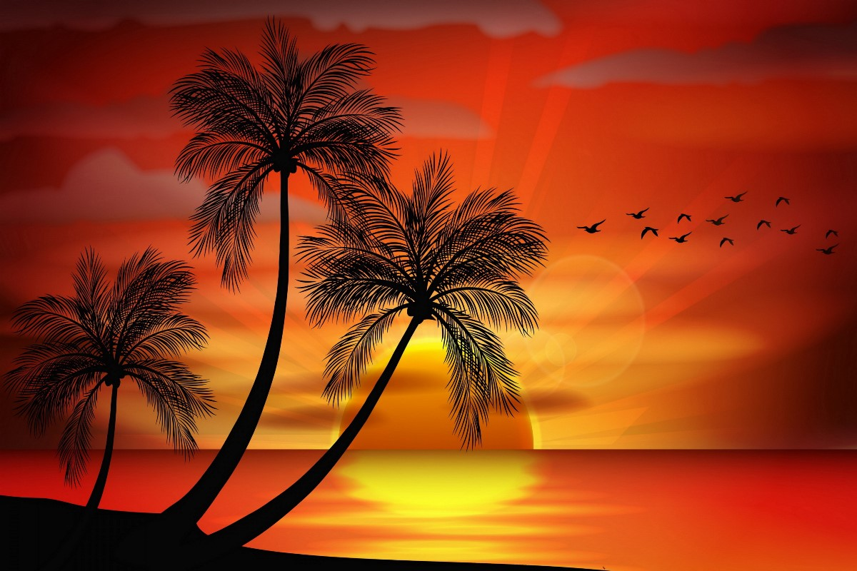 sunset paradise tropical island palms landscape silhouette 431FJ living room home wall art decor wood frame fabric posters