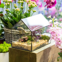Tabletop House Shape Plant Glass Container Geometric Terrarium DIY Indoor Succulents Fern Moss Planter Display Flower