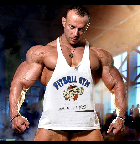 d80c10bd8 Brand Gym Clothing Fitness Men Tank Pitbull Gym Mens Bodybuilding Stringers  Tank workout Singlet Sleeveless Shirt Running Vest -in Tank Tops from Men's  ...