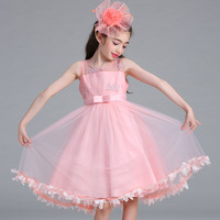 New Childrens Clothes Flower Girl Mesh Gauze Embroidery Princess Dresses For Girl Lace Performance Girl Costume