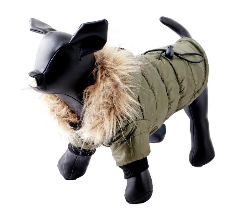 dog warm clothes
