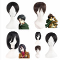 Hot Sale! Attack on Titan Series Fashion Straight Anime Cosplay Hot Wigs (104)