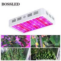 BOSSLED 300 w 600 w 800 w 1000 w 1200 w 1500 w 1800 w 2000 w spettro completo led coltiva la luce per le piante d'appartamento Fiore frutta coltiva la luce led