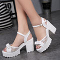 2017 New Style Women's Summer Shoes Gauze Open Toe Sandals Platform Shoes Female Thick Heel Platform High Heels Female Sandals