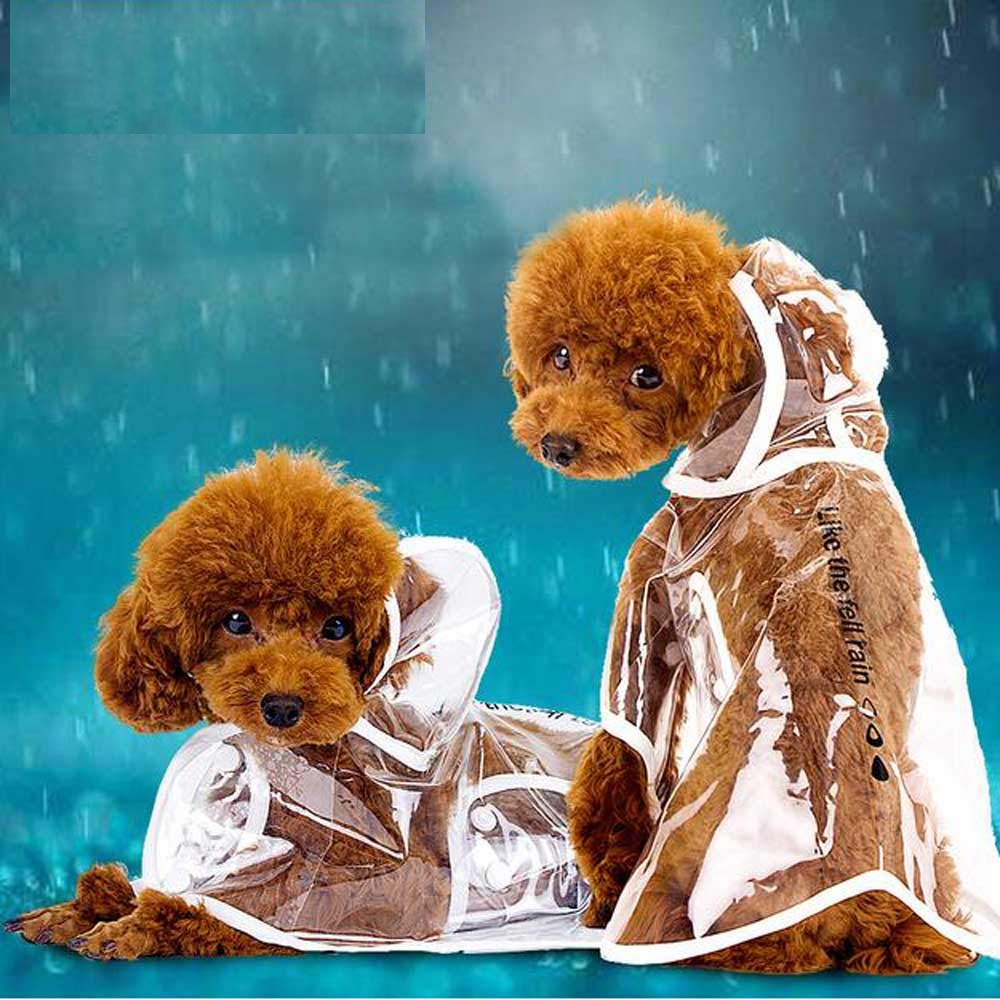 transparent Dog Raincoat with hood light clothes waterproof beautiful teddy bulldog small dog raincoat Pet Clothes