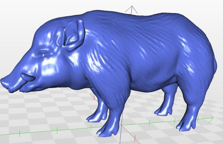 Full 3d  Model  Wildboar_1 For Cnc In STL File