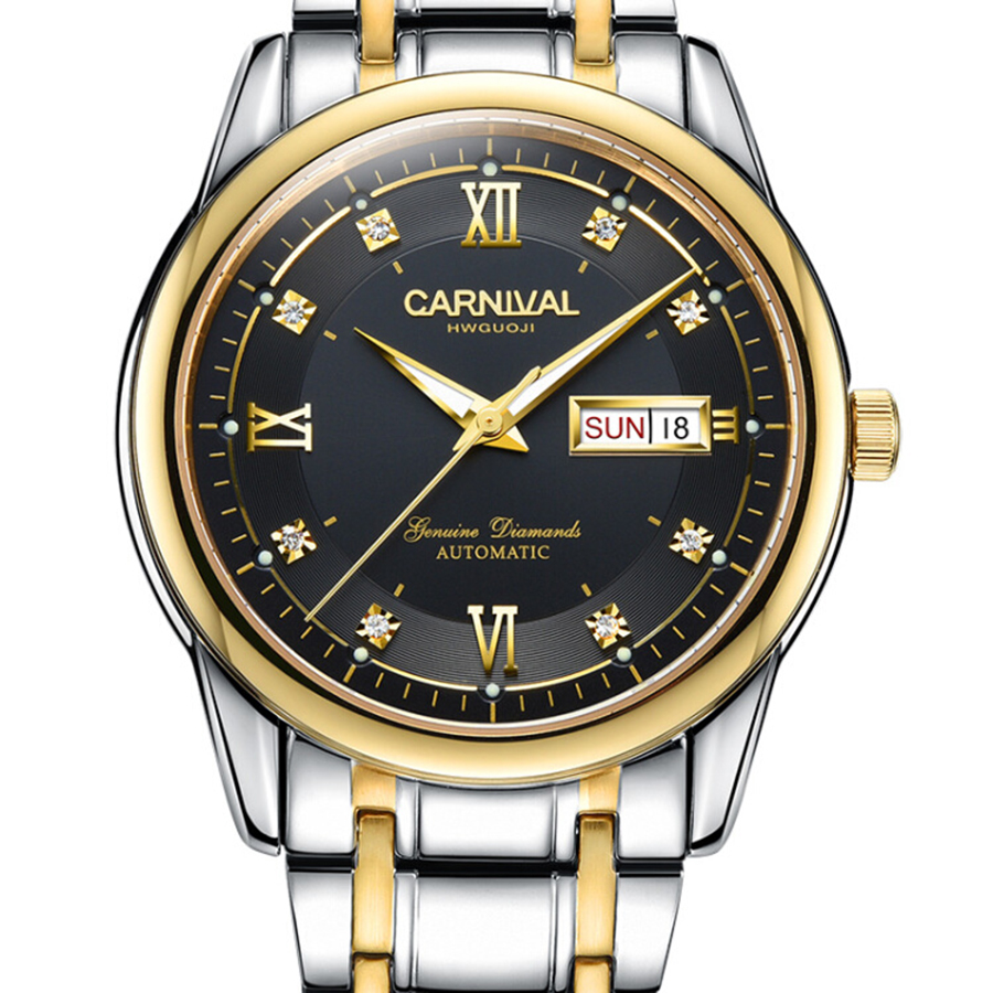 Carnival Brand Mechanical Watch Men Seagull Movement Luminous Full Stainless Steel Day-Date Waterproof Clock Two-Tone Gold Clock цена и фото