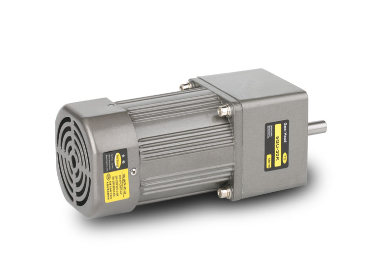 Geared motor 60W miniature AC asynchronous gear speed control fixed speed reversible control motor 220V380V