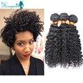 Rizado Pelo Virginal rizado Mongol Afro Rizado Rizado Extensiones de Cabello Extensiones de Cabello Humano 2 UNIDS Ganchillo Rosa Queen Hair Products