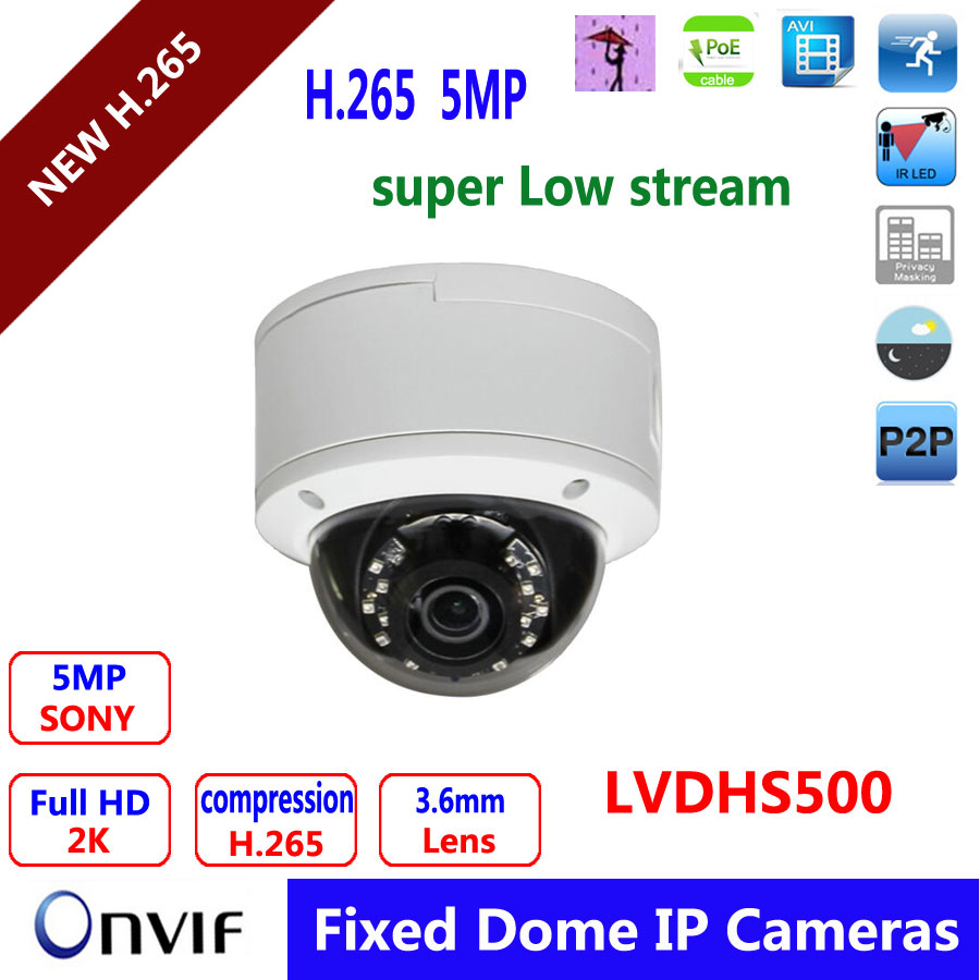 5Mp Full HD Vandal Proof IR Network Dome Camera with POE H 265 Compression 1 1