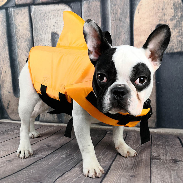 Shark Dog Life Jacket Safety Clothes Pet Life Vest Summer Dog Swimming Clothing French Bulldog Fin Jacket Play in the Sea 4