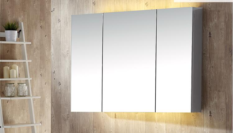 Illumine Dual Stainless Steel Medicine Cabinet With Lighted Mirror: Stainless Steel Mirror Cabinet With LED Lamp. Toilet