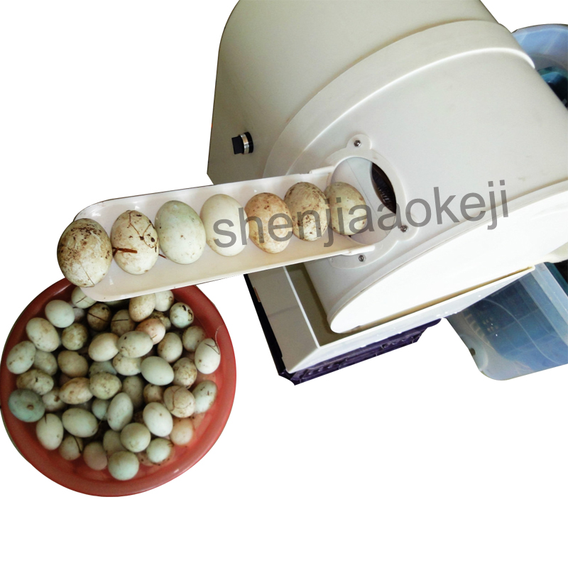 egg washer 220V chicken duck goose egg cleaner wash machine 2400 pcs h poultry farm equipment