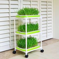 Special Planting pan/Pots Balcony vegetables plastic hot sale Seedling tray sprout plate nursery pots tray box bonsai 3layer