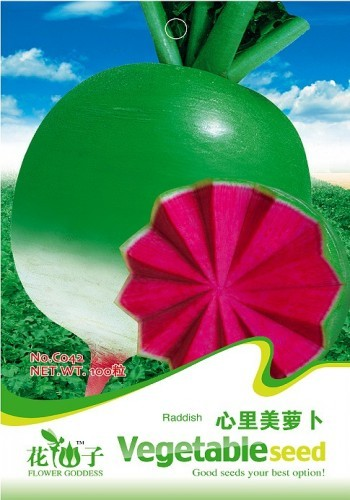 Fruits and vegetables seeds red radish 100 pcs/bag Ori