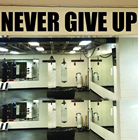Large Never Give Up ...