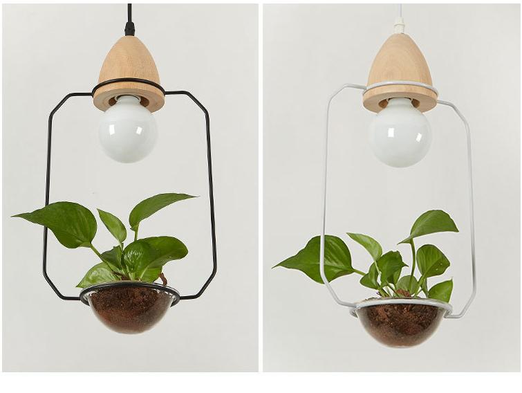 2 Plant Pendant Light