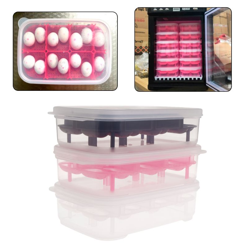 Reptile Egg Incubator 14 Slots Professional Transparent Cover For Lizard Snake Gecko Eggs Hatcher Hatching Box Case Tray Plastic