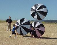 Nouveau logiciel de cerf-volant 3D pour ballon de plage, adapté aux adultes pour piloter des cerfs-volants, et facile à piloter