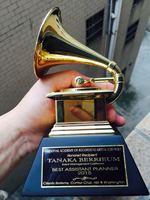 Грэмми граммофон изысканный сувенир музыка трофей цинковый сплав трофей хороший подарок награду за музыкальный конкурс Бесплатная достав