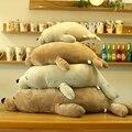 N-1PCS Упругой супер мягкие подушки страшно морской лев плюшевые игрушки куклы подушка подушки подушки сон подушка девушке подарок 45/60/80/100 СМ