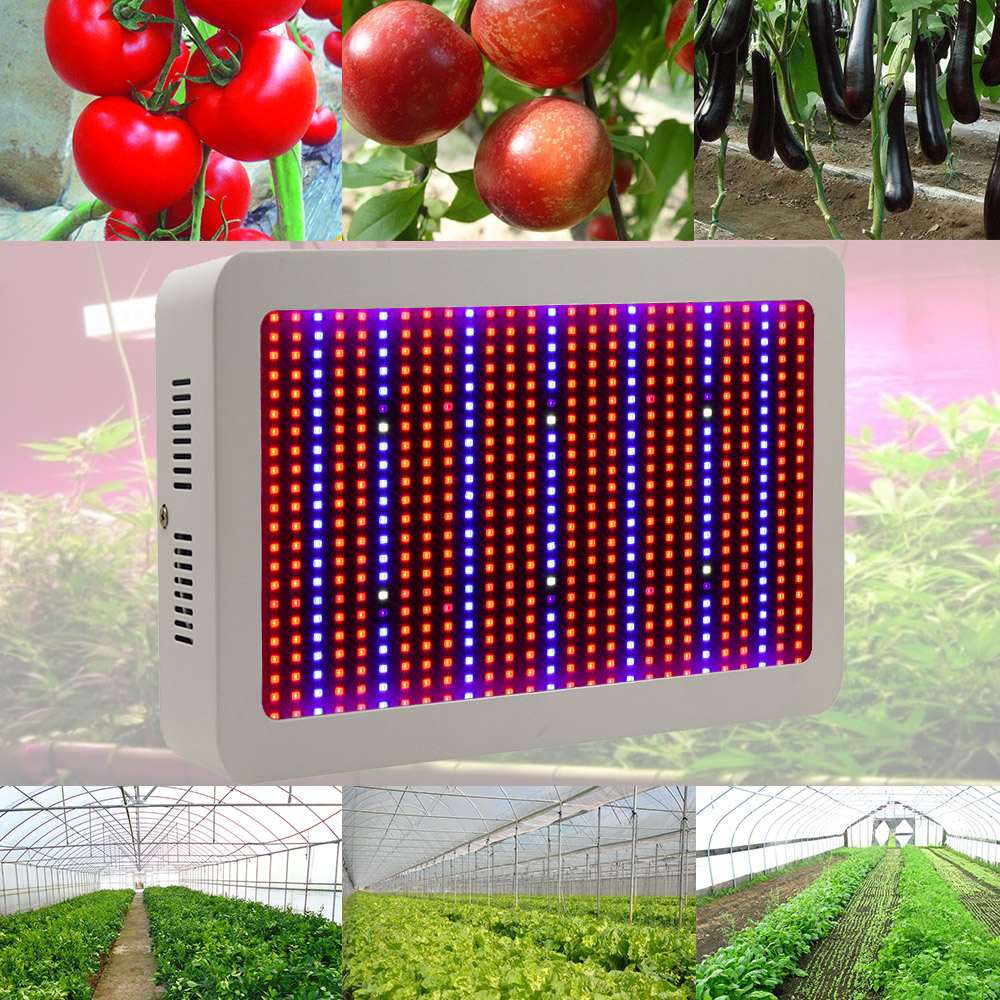 Full Spectrum LED Grow Lights 1200W 800W 600W 400W Plant Growing Lamps 410  730nm UV IR Red Blue Hydroponics For Indoor Plants AE In LED Grow Lights  From ...