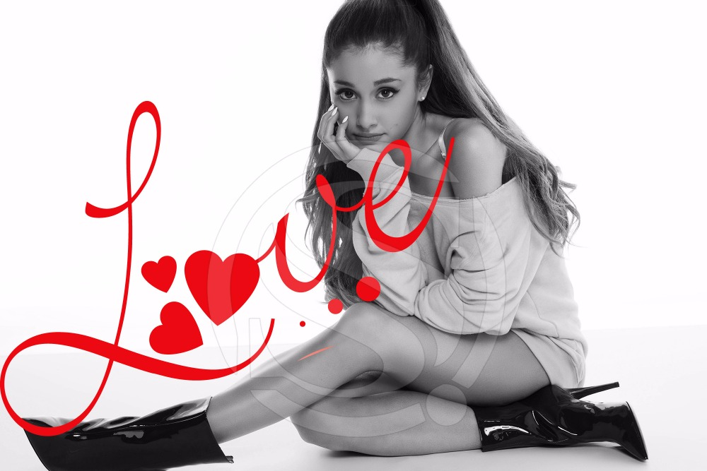 Ariana Grande Custom Canvas Fabric Poster In Home Office