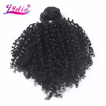 Lydia Synthetic Afro Kinky Curly Hair Weaving 1 Piece Nature Color 100% Kanekalon Hair Weave Bundles(China)