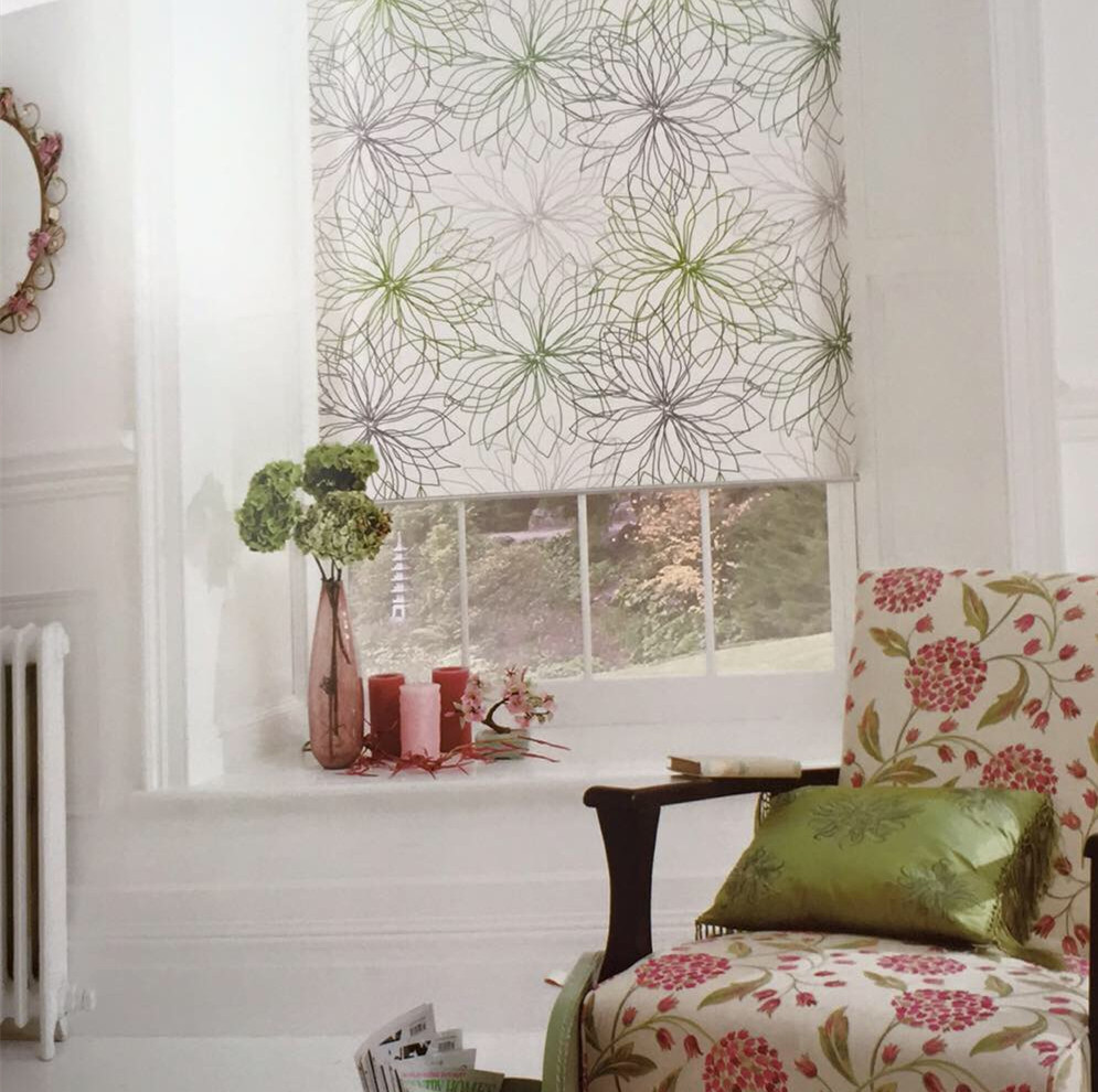 Printed Roller Shades Blinds