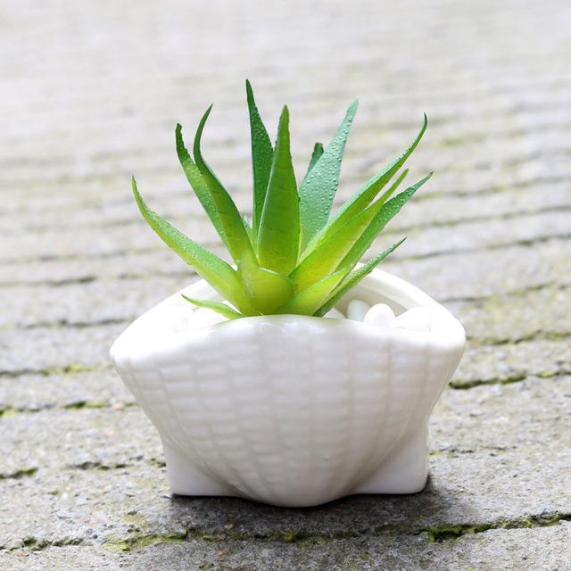 6pcs/set Mini White Small Flowerpot shell Shape Ceramic Succulent Plant Pot Holder Fairy Garden Cactus Flower Pots Planter