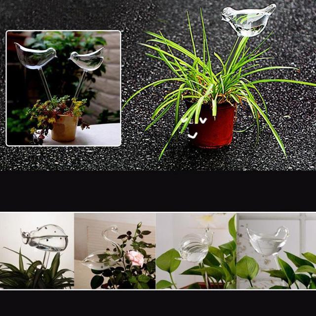 Bird Glass Watering Flower Vase Terrarium Container Wedding Gift Garden  Decor